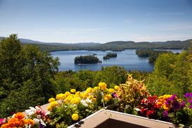 Jakie kwiaty na balkon nadają się najlepiej – sprawdzamy!