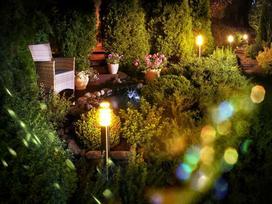 Oświetlenie oczka wodnego - pomysły, sprawdzone rozwiązania, polecane lampki