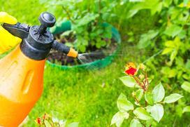 Opryskiwacze ogrodowe - rodzaje, ceny, opinie użytkowników, co wybrać?