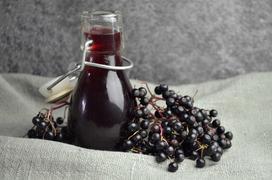 Wino z czarnego bzu – sprawdź najlepsze przepisy na wino z czarnego bzu