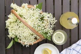 Syrop z kwiatu czarnego bzu - najlepsze przepisy na przygotowanie soku krok po kroku