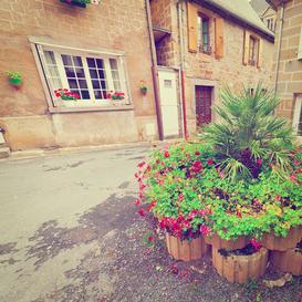 Gazony ogrodowe – cena, rodzaje, możliwe aranżacje, co wybrać