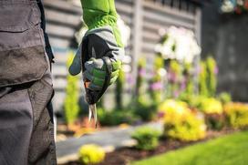 Ile kosztuje urządzenie i aranżacja ogrodu?
