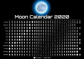 Kalendarz księżycowy ogrodnika krok po kroku - co warto wiedzieć?