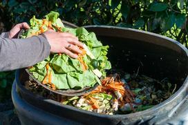 Na czym polega kompostowanie? Wyjaśniamy krok po kroku