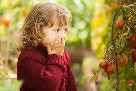 10 największych błędów w ogrodzie