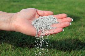 Wapnowanie trawnika krok po kroku - terminy, wybór wapna, porady praktyczne