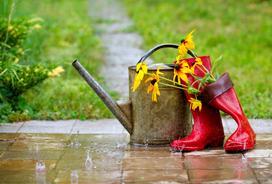 Jak wybrać zbiornik na deszczówkę?