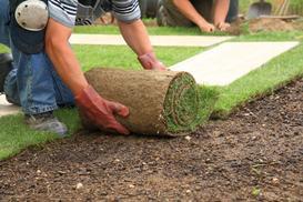Hydrożel przy zakładaniu trawnika - dlaczego warto go użyć?
