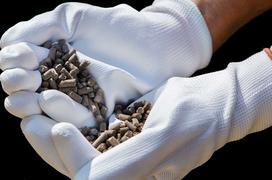Obornik granulowany - opis, zastosowanie, cena, porady praktyczne
