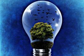 Czy Odnawialne Źródła Energii są rozwiązaniami dla osób prywatnych?