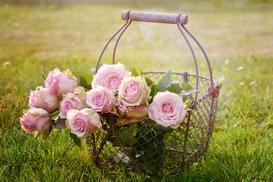 Kwiaty na dowóz – dlaczego warto wręczać kwiaty z dowozem do domu?