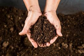 Jak wykorzystać w ogrodzie torf kwaśny? Praktyczne wskazówki