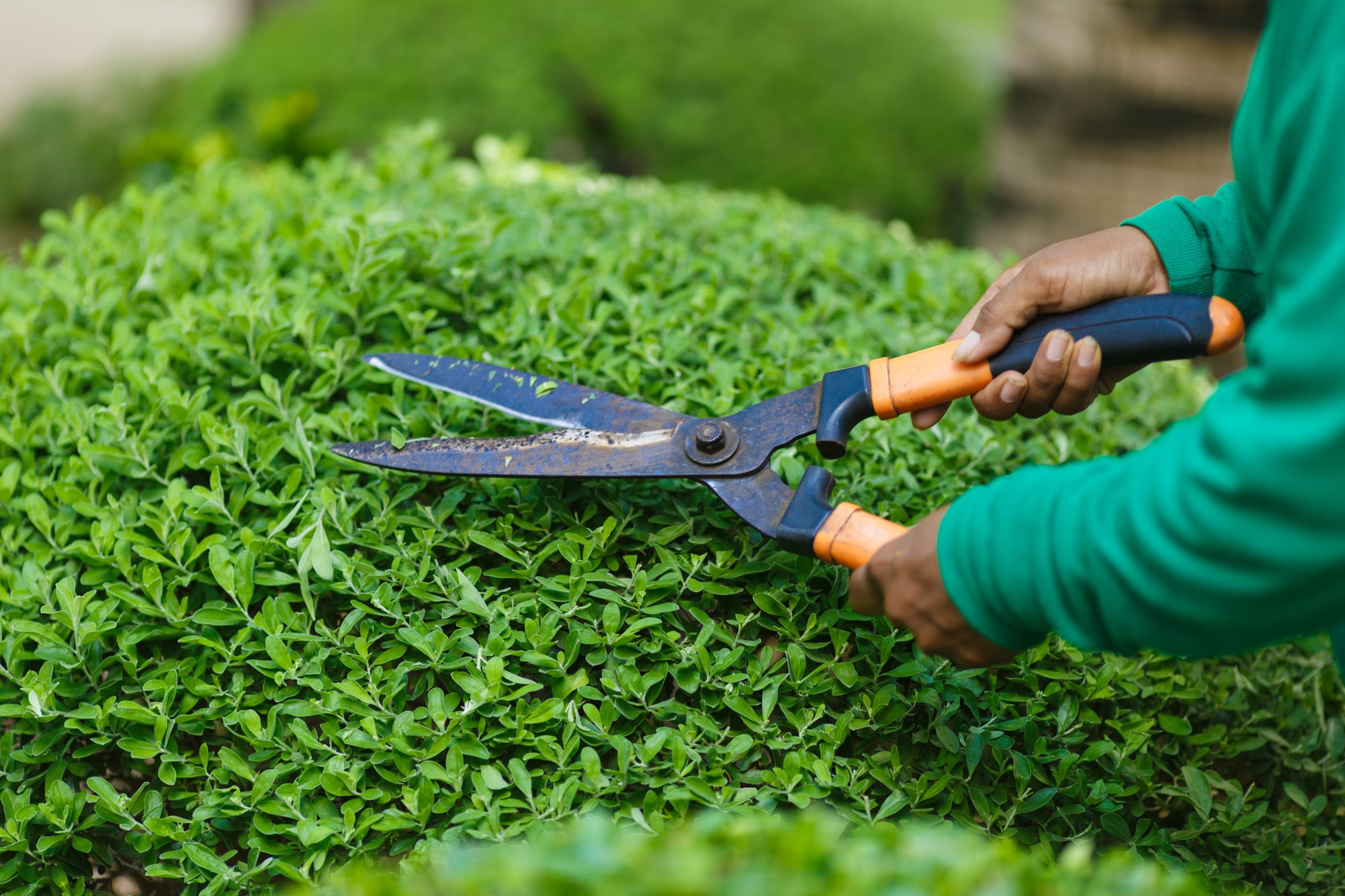 Садовый инвентарь и инструмент высокого качества