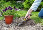 Pierwsze kroki w ogrodzie – jak przygotować ziemię pod sadzenie roślin?