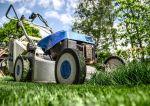 Jak zadbać o trawnik przed domem?