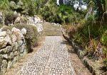 Jak zrobić skalniak z kamieni - porady i instrukcja krok po kroku